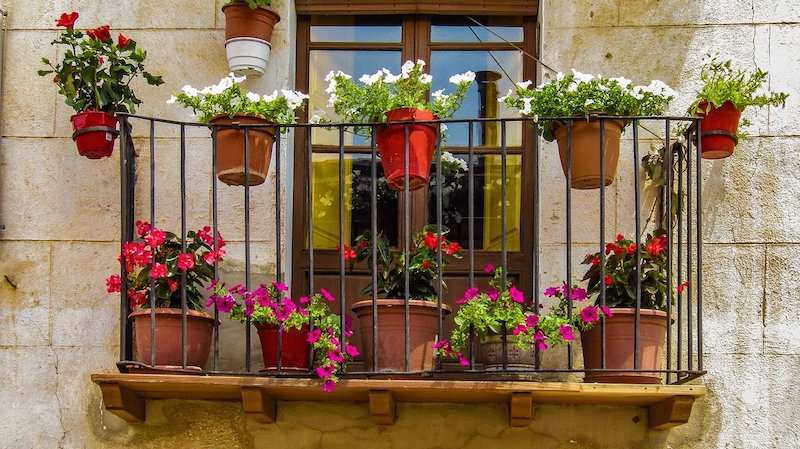 Balcony Garden Ideas - Check What Plants Are Best For Balconies