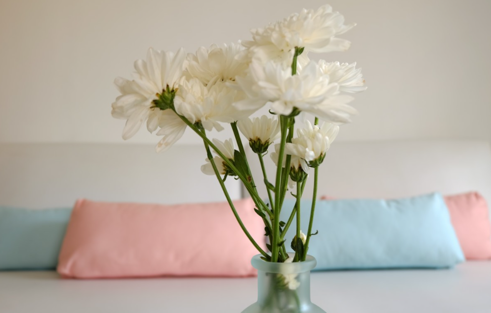 Pastels colors cushions