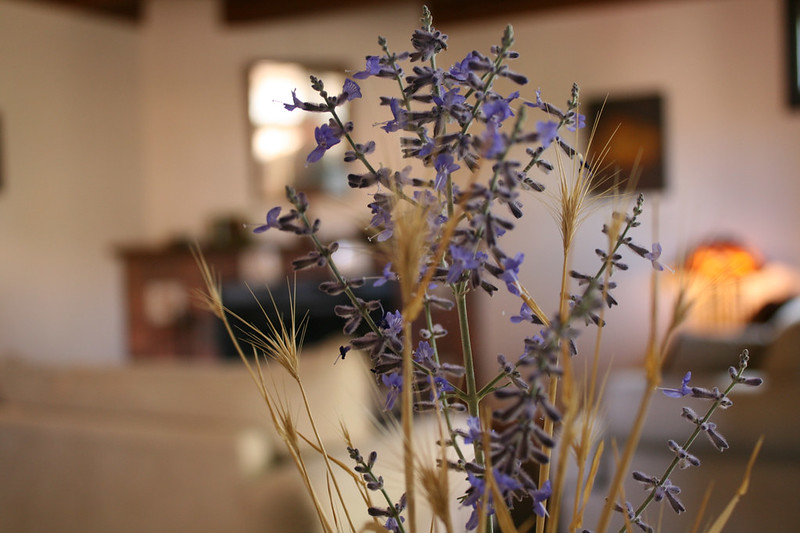 French country decor lavender
