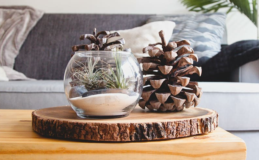 Fall crafts with pinecones